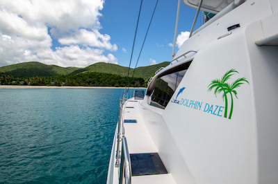 View of a tropical island from the side deck of the Dolphin Daze catamaran yacht