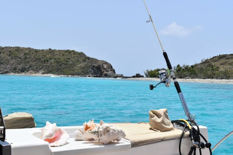 A fishing pole cast off the side of a yacht with a pile of conch shells next to it