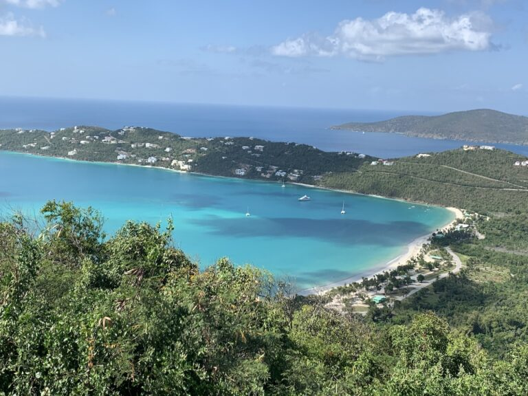 Virgin Islands scenery of trees, white sand beaches, and clear blue waters