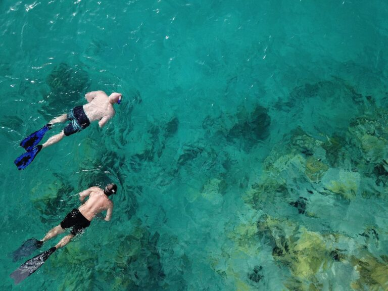 Two men snorkeling the blue water of the Virgin Islands with coral visible beneath the surface
