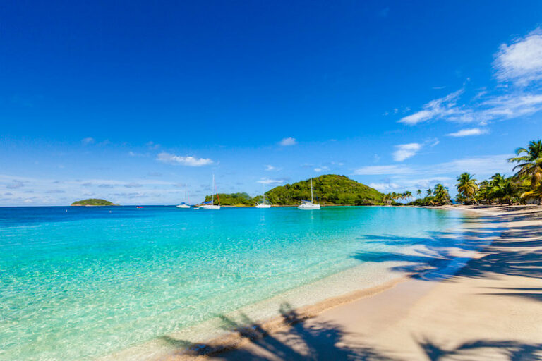 View of Salt Whistle Bay, Mayreau showing a sandy beach and several sailing yachts floating on clear blue water